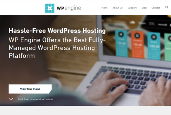 wpengine-offers-amazing-speed-with-option-to-save-money-with-black-friday-sale